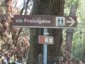 18-via francigena1_1024x768